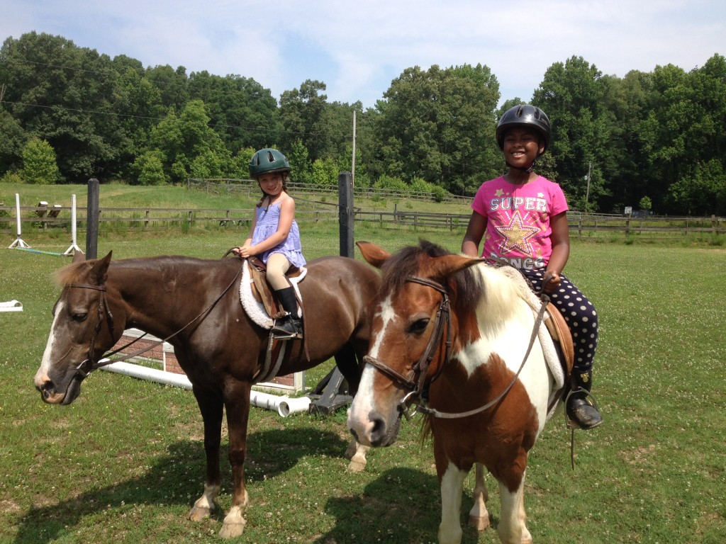 Shady Creek Farm Riding Academy Total Horsemanship Is The Highest Priority